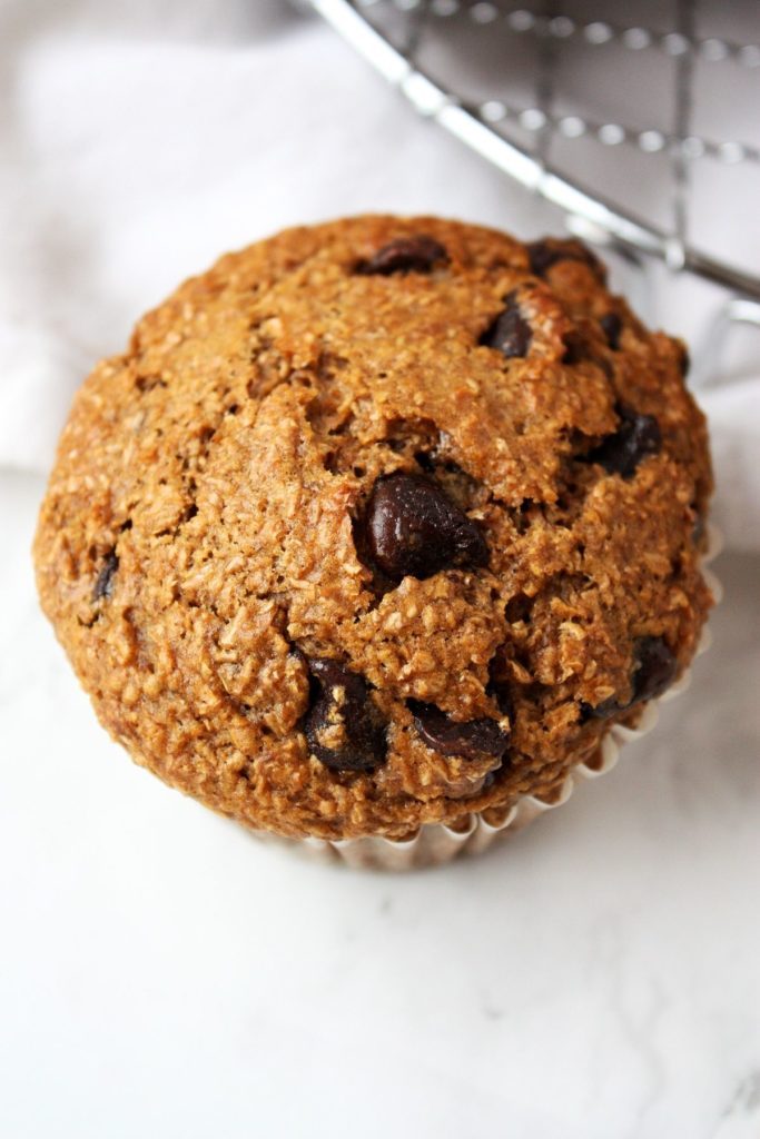 Close up of one chocolate chip bran muffin.